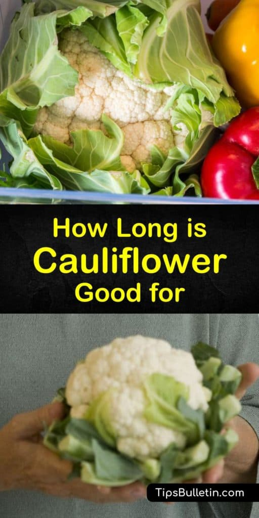 How long does cauliflower last? Learn how to store cauliflower as a whole head or florets for the longest shelf life. Store fresh or cooked cauliflower in the fridge short term and freeze cauliflower for long term storage. #cauliflower #spoil #fresh