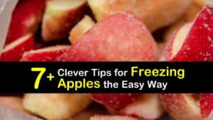 How to Freeze Apples titleimg1