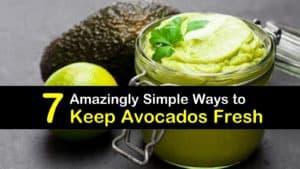 How to Keep Avocados Fresh titleimg1