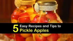 How to Pickle Apples titleimg1