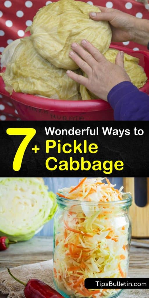 Create your own quick pickled cabbage and pickled red cabbage recipes using tasty ingredients like apple cider vinegar and peppercorns. These recipes transform plain cabbage into a sauerkraut side dish and taste amazing on tacos and hot dogs. #howto #pickle #cabbage