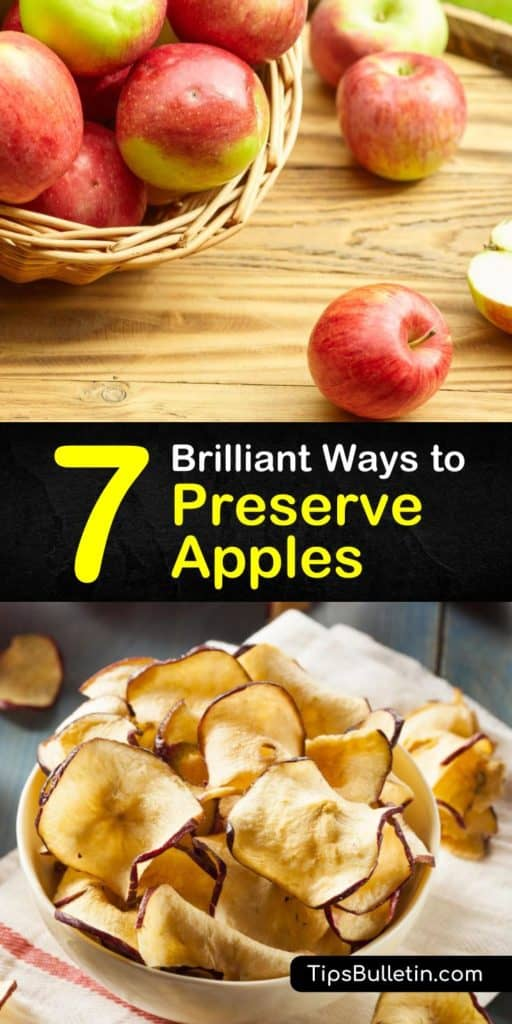 Preserving apples is easy, whether you opt to make apple cider, apple butter, or canned apples for apple pie filling. Freezing apples is another way to preserve apples for apple pie and dried apples are great for snacks. #howto #preserve #fresh #apples