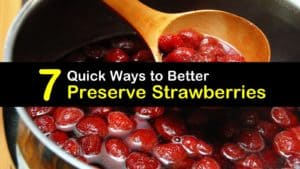 How to Preserve Strawberries titleimg1