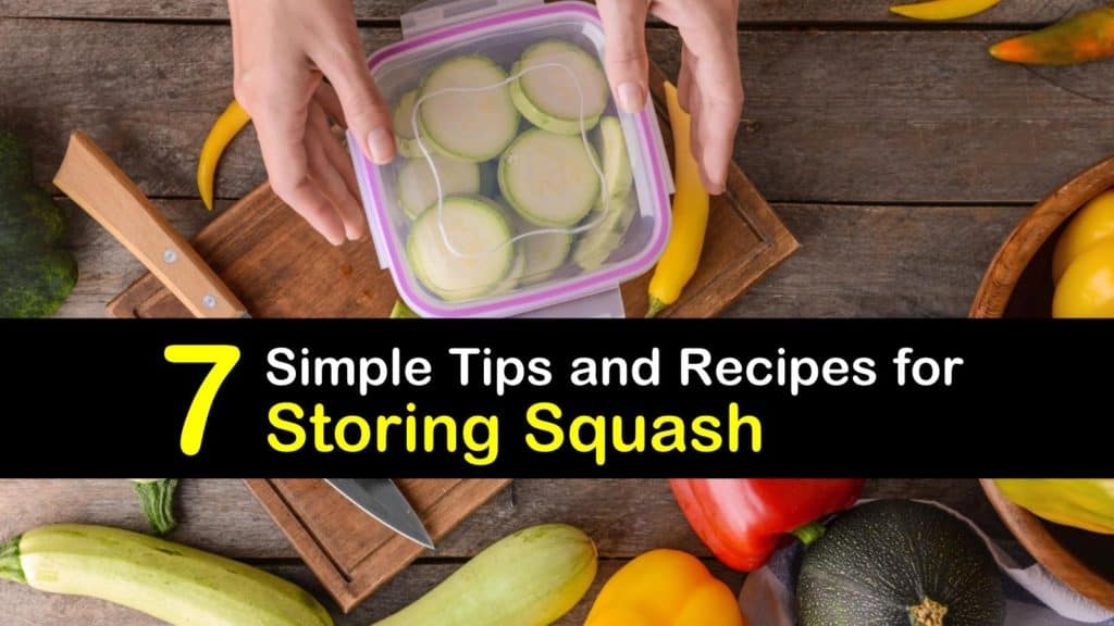 How to Store Squash titleimg1