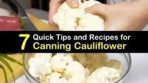 Canning Cauliflower titleimg1