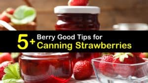Canning Strawberries titleimg1