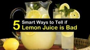 Does Lemon Juice go Bad titleimg1