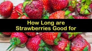 How Long are Strawberries Good for titleimg1