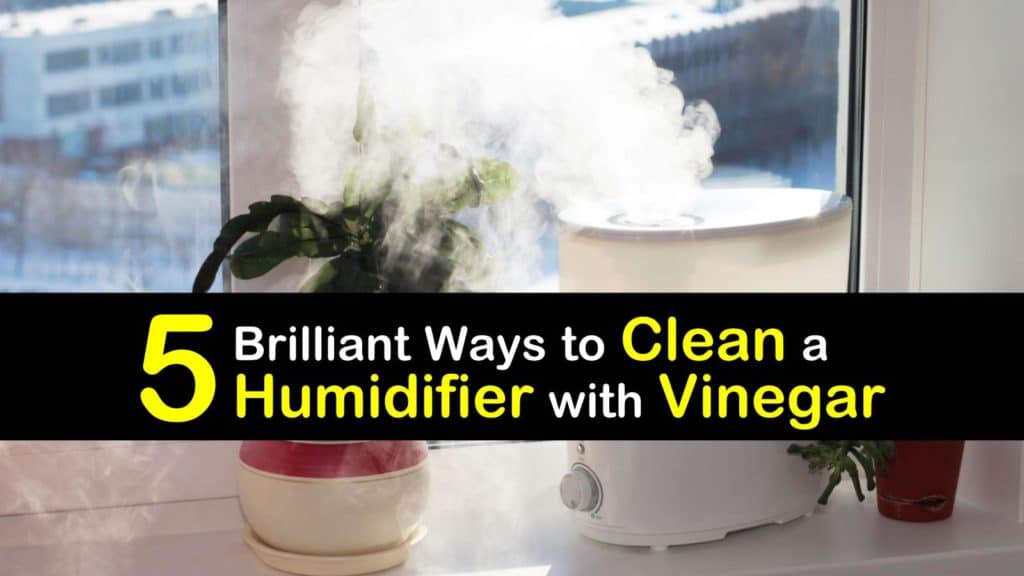 How to Clean a Humidifier with Vinegar titleimg1