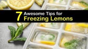 How to Freeze Lemons titleimg1
