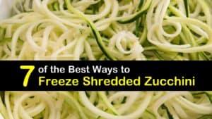 How to Freeze Shredded Zucchini titleimg1