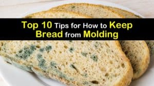 How to Keep Bread from Molding titleimg1