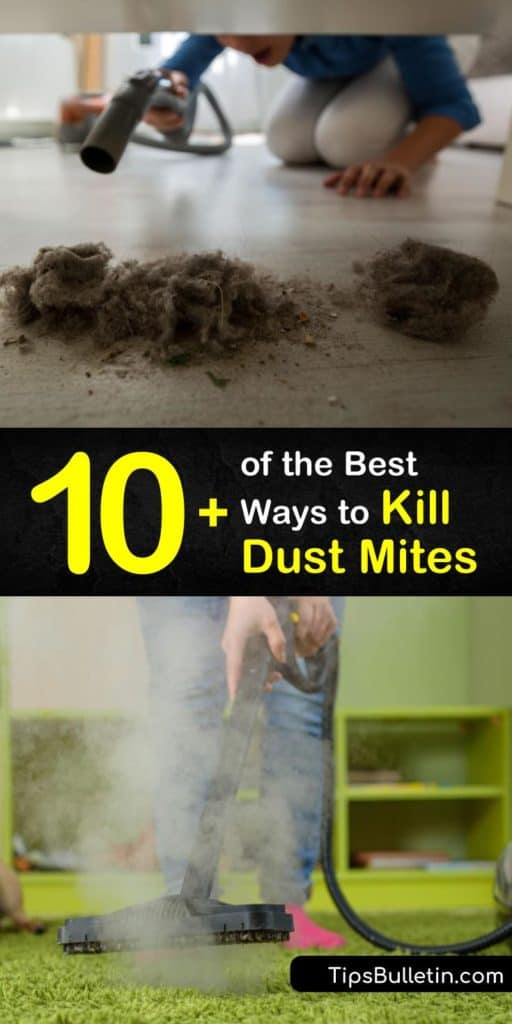 Keep yourself protected from a dust mite allergy with these tips to kill dust mites. Learn proper vacuuming techniques for carpeting, how to put a HEPA filter in a dehumidifier, and how to clean washable fabrics like pillowcases to remove old skin cells. #howto #getridof #dustmites