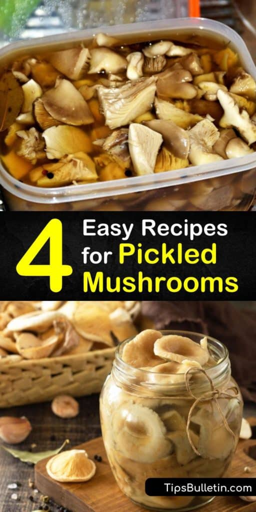 Try our basic recipe for pickling mushrooms, which involves vinegar, two cups of water, sugar, salt, and seasonings like black peppercorns, garlic cloves, and sprigs of herbs. Plus, sample a variation that marinates the mushrooms at room temperature. #mushrooms #pickle #howto