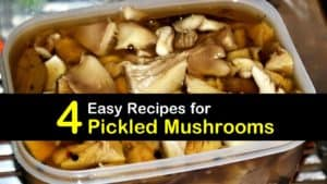 How to Pickle Mushrooms titleimg1