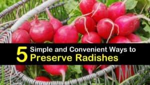 How to Preserve Radish titleimg1