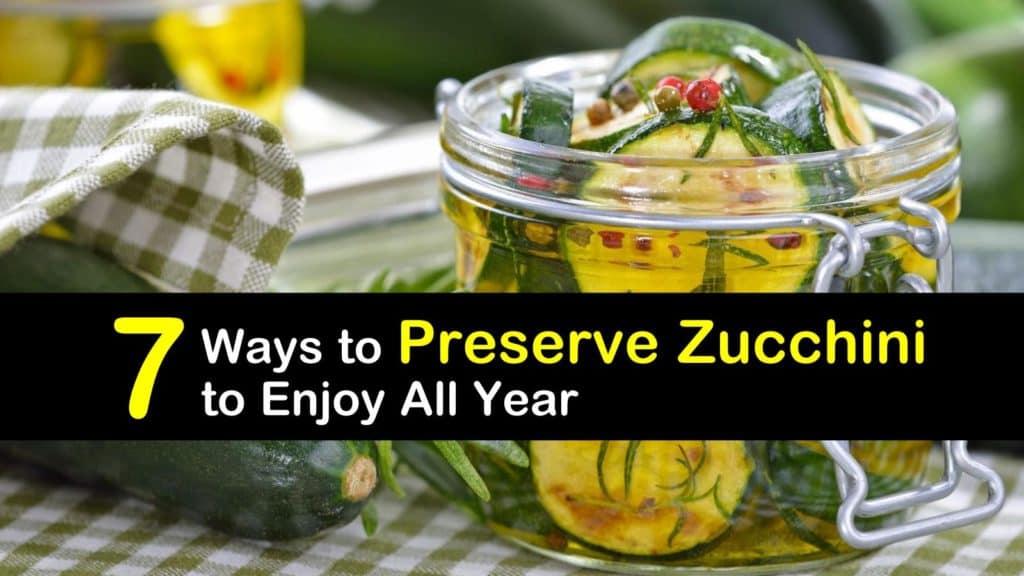 How to Preserve Zucchini titleimg1