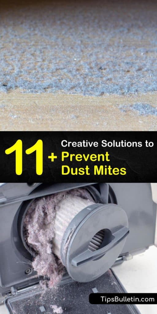 Discover easy methods to prevent dust mite allergens residing in carpeting. Find out how the correct vacuum cleaner, dehumidifier, and air conditioning units help control dust. Vacuuming with a HEPA filter and cleaning washable fabrics with hot water are two easy tricks. #preventing #dust #mites