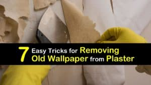 How to Remove Old Wallpaper from Plaster Walls titleimg1