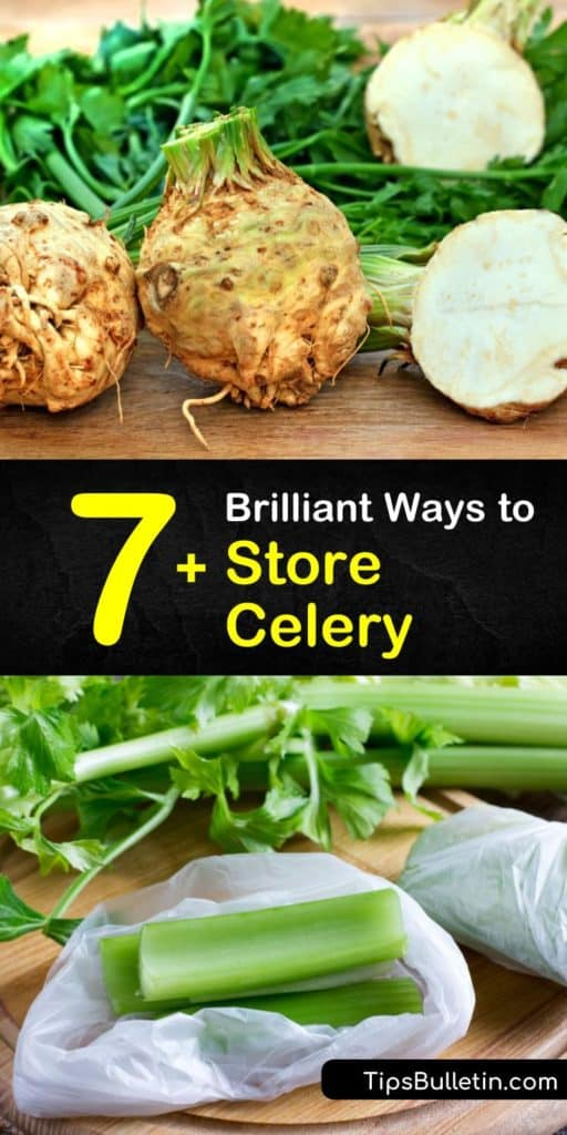 Once you know how to keep celery fresh with only a paper towel, an airtight container, and your fridge's crisper drawer, you'll want to buy a bunch of celery every time you go to the grocery store. Learn how to store celery with these tips that make it easier than ever. #howto #storage #celery