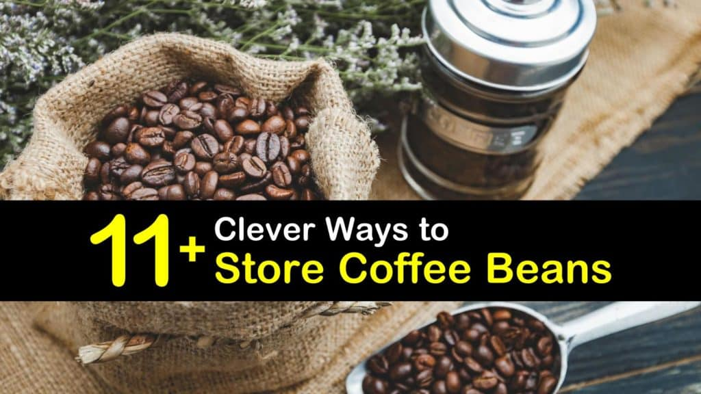 How to Store Coffee Beans titleimg1