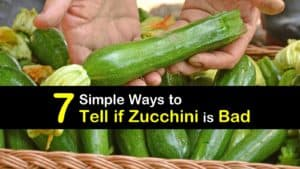 How to Tell if Zucchini is Bad titleimg1