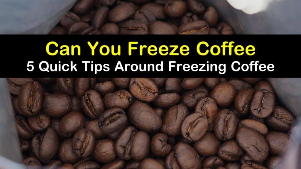 Can You Freeze Coffee titleimg1