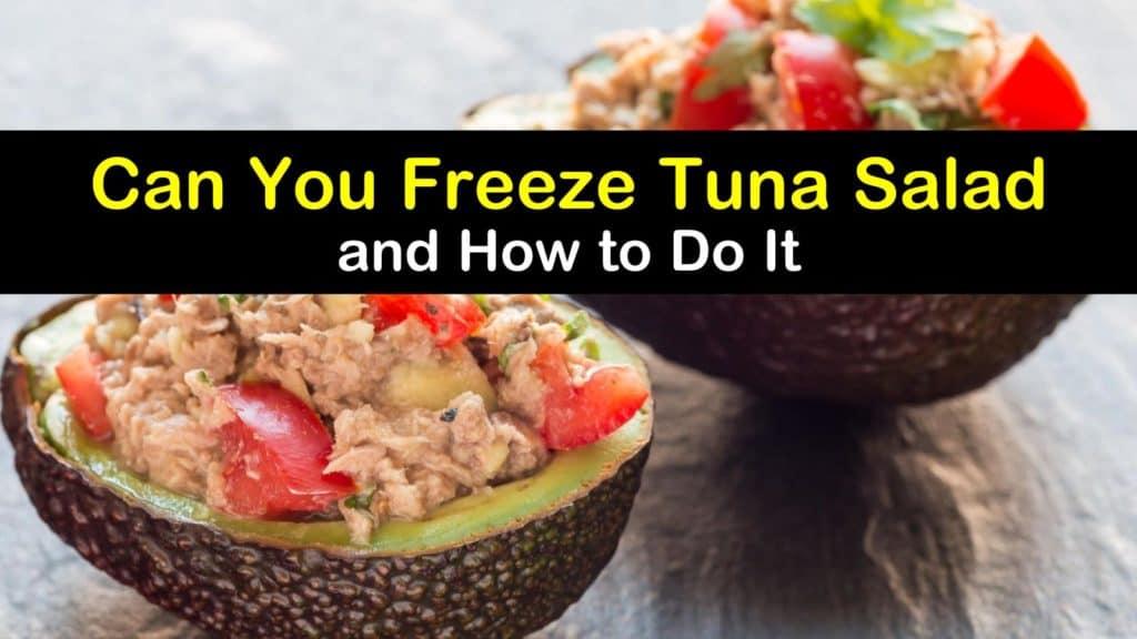 Can You Freeze Tuna Salad titleimg1
