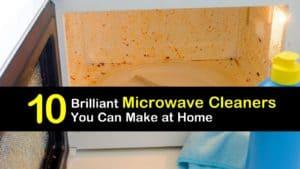DIY Microwave Cleaner titleimg1