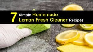 Homemade Lemon Cleaner titleimg1