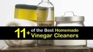 Homemade Vinegar Cleaner titleimg1