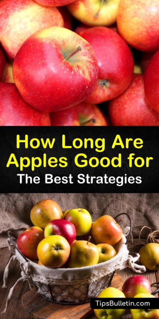Want to know how long are apples good for? Not only does this article tell you, it also explains the best ways to preserve fresh apples at room temperature or in the fridge. We also delve into storing applesauce and learn how to make a delicious apple pie. #apples #storage #fresh #last