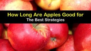 How Long are Apples Good for titleimg1