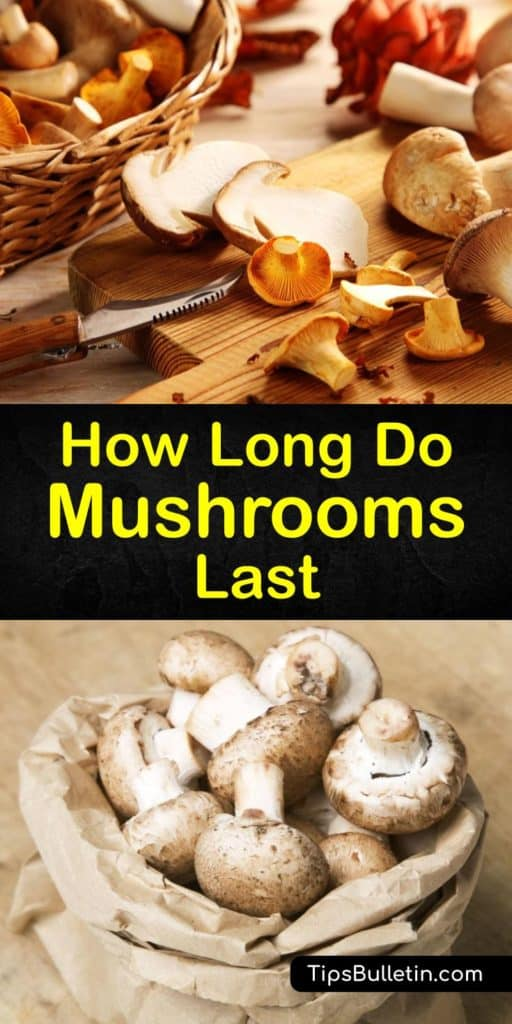 Learn how to store mushrooms and prevent spoilage with these easy to follow techniques. Set fresh mushrooms and whole mushrooms on a paper towel in a paper bag to avoid dark spots, slime, and premature spoilage. Room temperature storage and a plastic bag must be avoided. #how #long #mushrooms #last