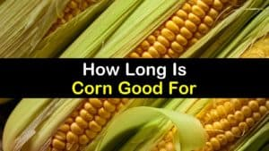 How Long is Corn Good for titleimg1