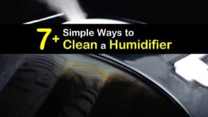 How to Clean a Humidifier titleimg1