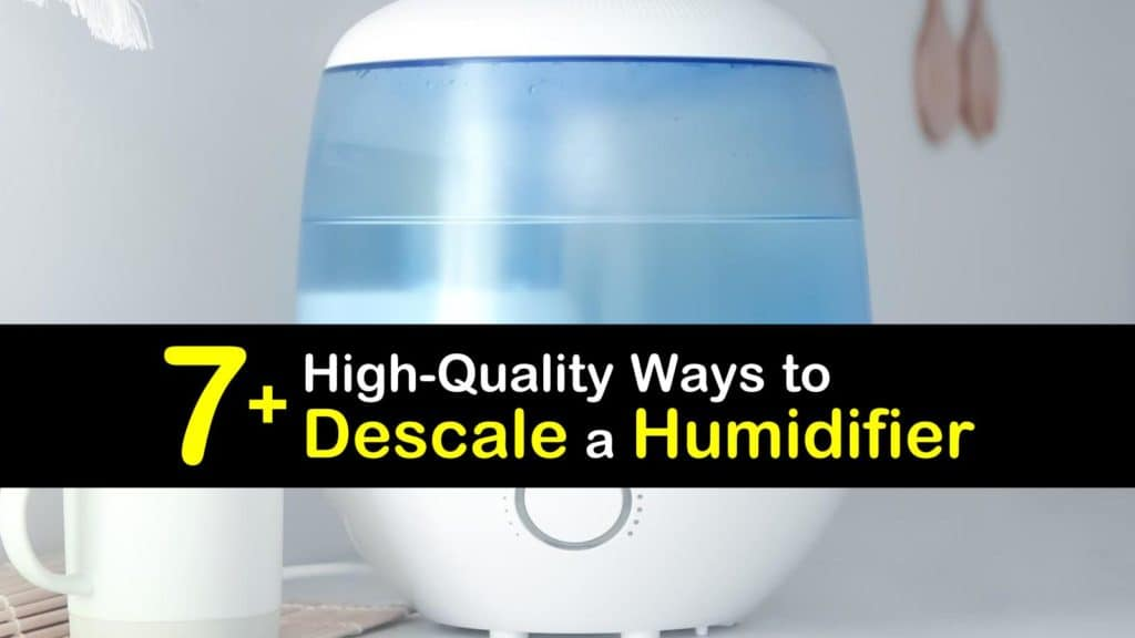 How to Descale a Humidifier titleimg1