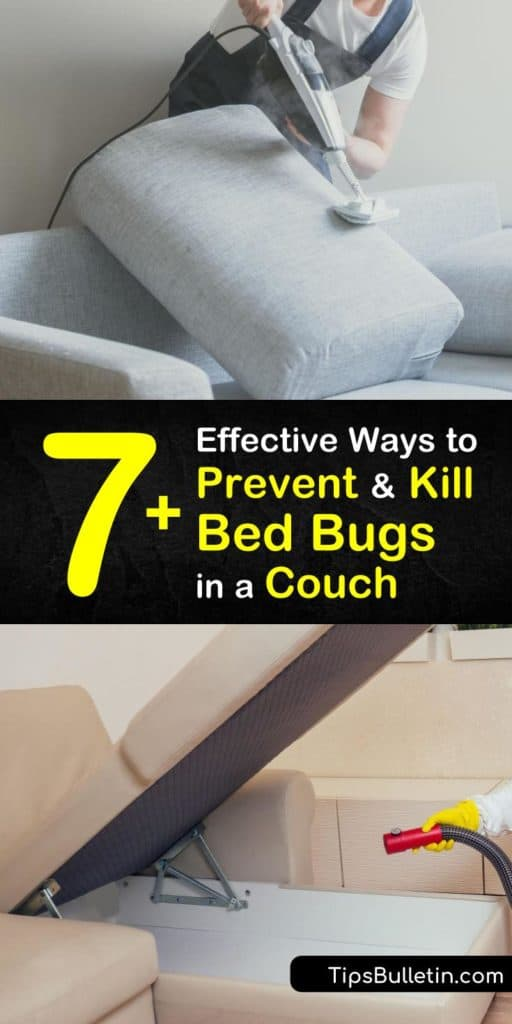 Use these tips and tricks to kill bed bugs and prevent a bed bug infestation in your couch and bed frames. Use pest control methods like insecticides, an encasement, and correct vacuuming techniques to avoid hiring an exterminator. #getridof #bedbugs #couch