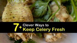 How to Keep Celery Fresh titleimg1
