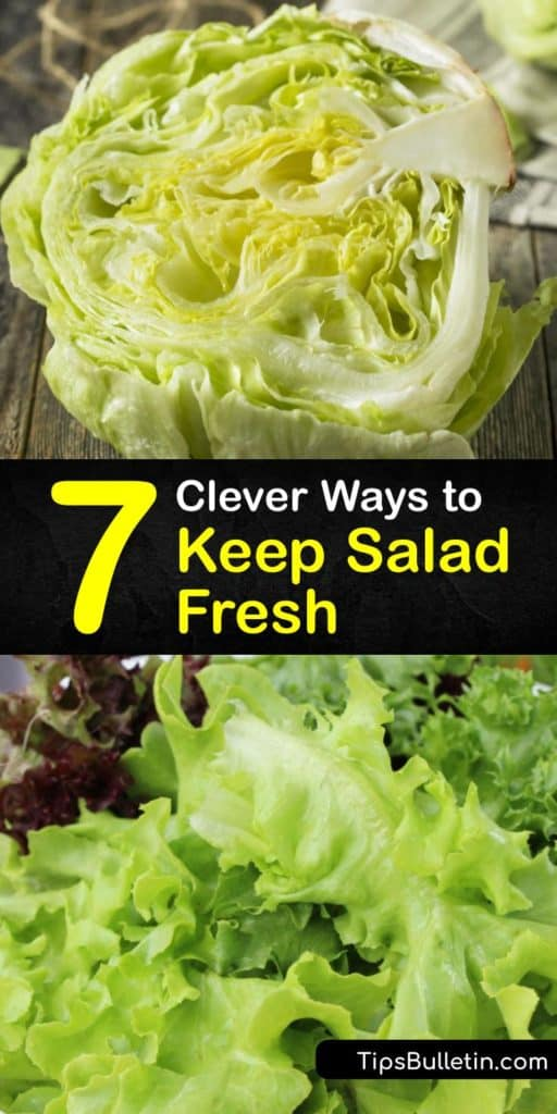 Prolong the life of your romaine, arugula, and other leafy greens when you discover the proper steps for storing veggies. These tips eliminate excess moisture in your crisper drawer and storage containers so you don't have to deal with wilting lettuce again. #keep #salad #fresh