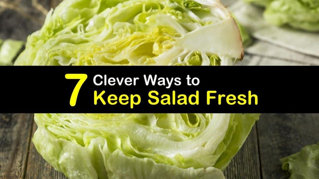 How to Keep Salad Fresh titleimg1