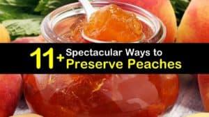 How to Preserve Peaches titleimg1