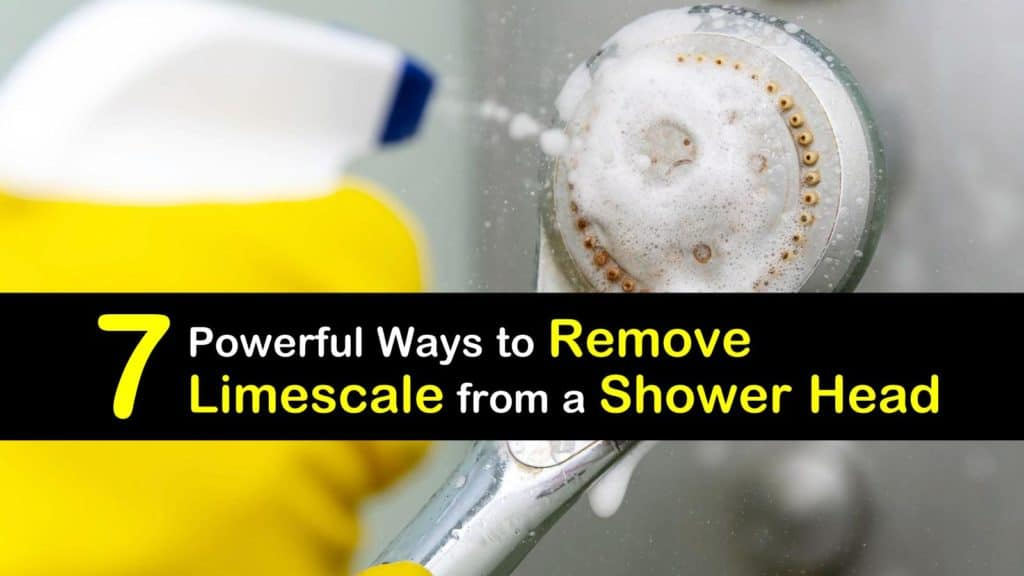 How to Remove Limescale from a Shower Head titleimg1