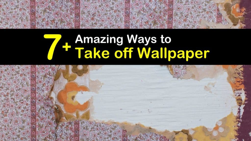 How to Take off Wallpaper titleimg1