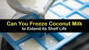 Can You Freeze Coconut Milk titleimg1