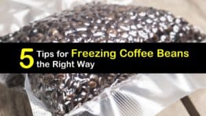 Can You Freeze Coffee Beans titleimg1