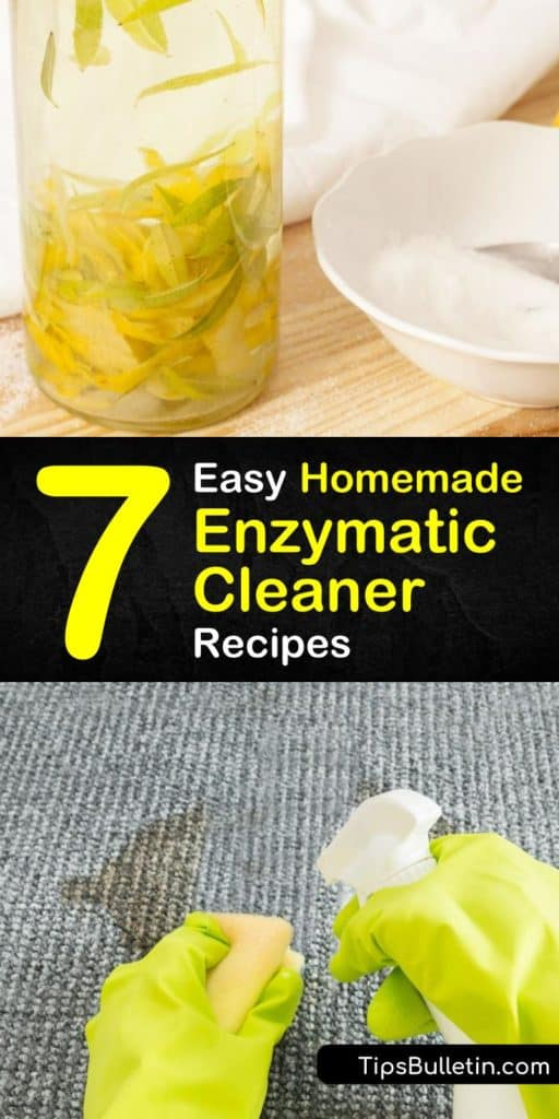 Grab your baking soda, spray bottle, and some citrus peels to start the fermentation process and create your own homemade enzyme cleaners. This cleanser is the cleaning solution you've been looking for because it lifts cat urine and dirt stains from nearly all surfaces. #homemade #enzymatic #cleaner