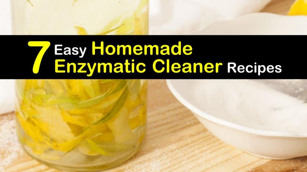 Homemade Enzymatic Cleaner titleimg1