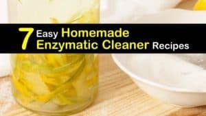 Homemade Enzymatic Cleaner titleimg1