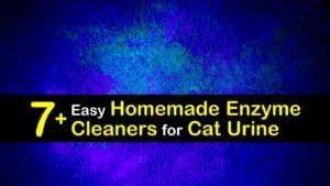 Homemade Enzyme Cleaner for Cat Urine titleimg1